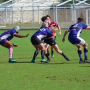 Bermuda make light work of Harvard